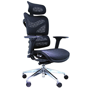 Ergo Human chair